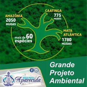 Read more about the article Plantio de 4.500 mudas de mais de 60 espécies no Dia de Proteção às Florestas
